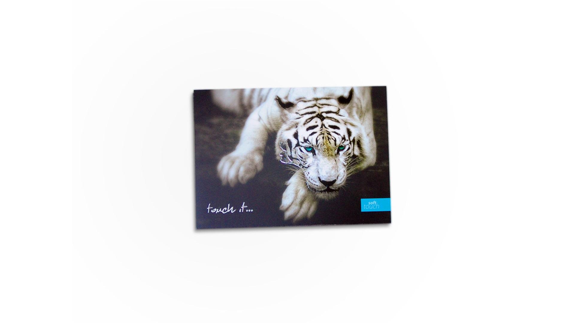 Kartki-pocztowe-softtouch